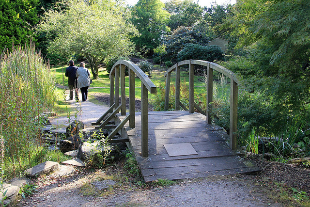 Monthly Guided Walks Furzey Gardens