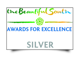 The Beautiful south Awards - Silver ACSI